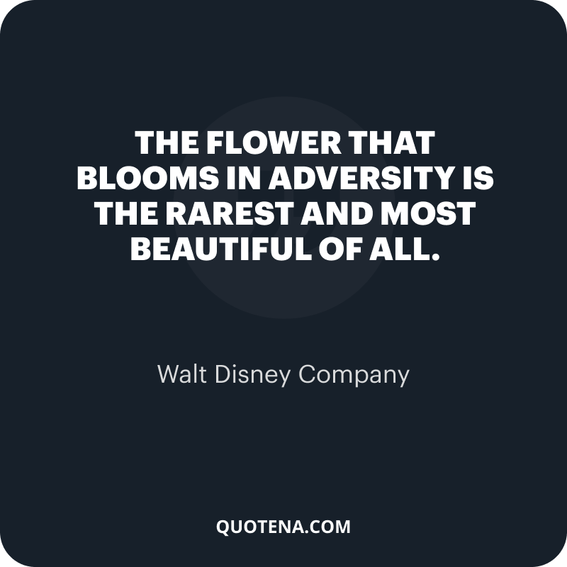 """""""The flower that blooms in adversity is the rarest and most beautiful of all."""" – Walt Disney Company"""
