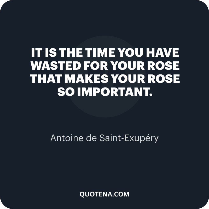 """""""It is the time you have wasted for your rose that makes your rose so important."""" – Antoine de Saint-Exupéry"""