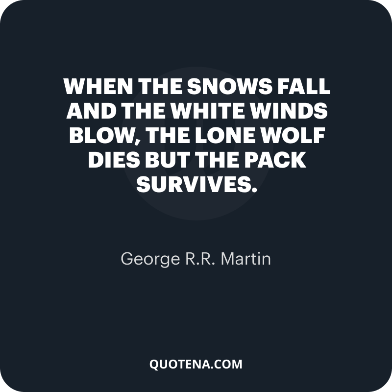 """""""When the snows fall and the white winds blow, the lone wolf dies but the pack survives."""" – George R.R. Martin"""
