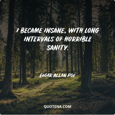 """""""I became insane, with long intervals of horrible sanity."""" – Edgar Allan Poe"""