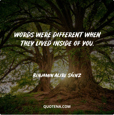 """""""Words were different when they lived inside of you."""" – Benjamin Alire Sáenz"""