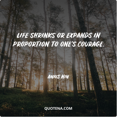 """""""Life shrinks or expands in proportion to one's courage."""" – Anais Nin"""