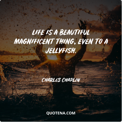 """""""Life is a beautiful magnificent thing, even to a jellyfish."""" – Charles Chaplin"""