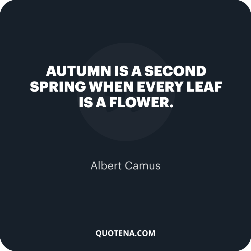 """""""Autumn is a second spring when every leaf is a flower."""" – Albert Camus"""