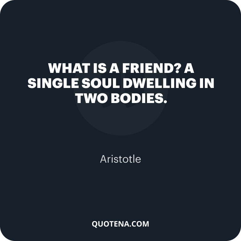 """""""What is a friend? A single soul dwelling in two bodies."""" – Aristotle"""