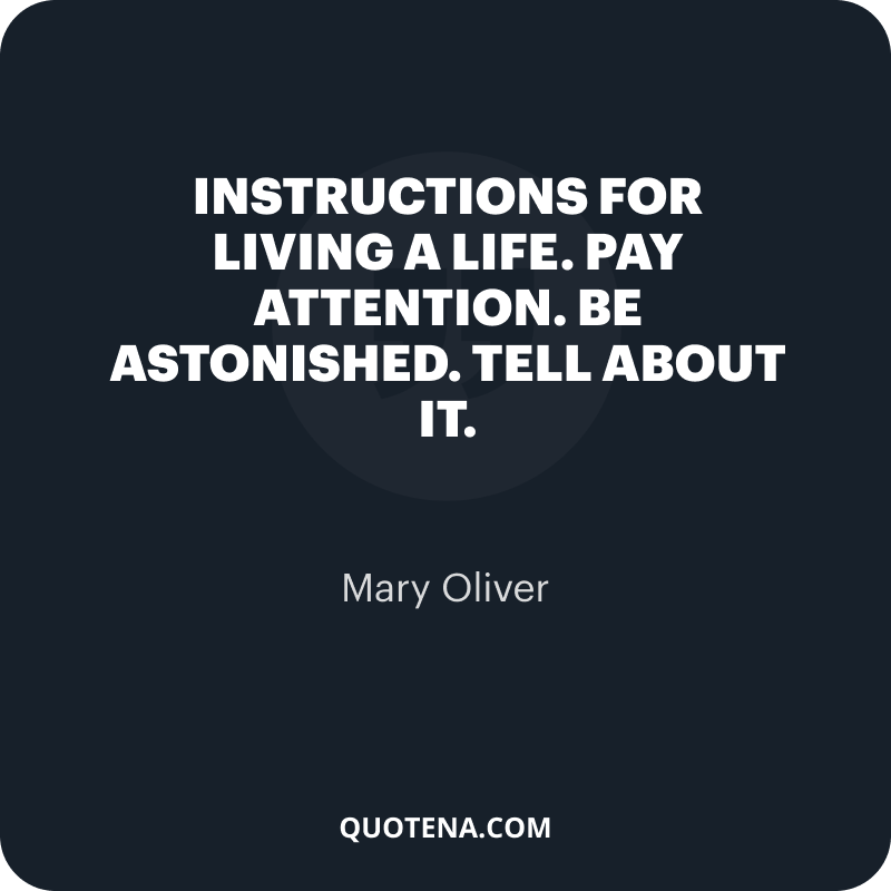 """""""Instructions for living a life. Pay attention. Be astonished. Tell about it."""" – Mary Oliver"""