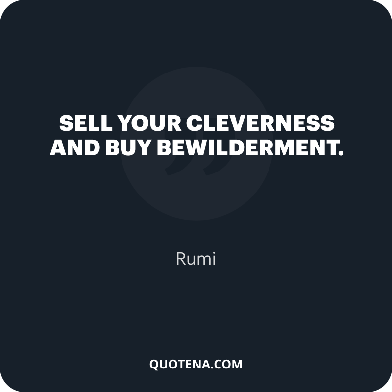 """""""Sell your cleverness and buy bewilderment."""" – Rumi"""